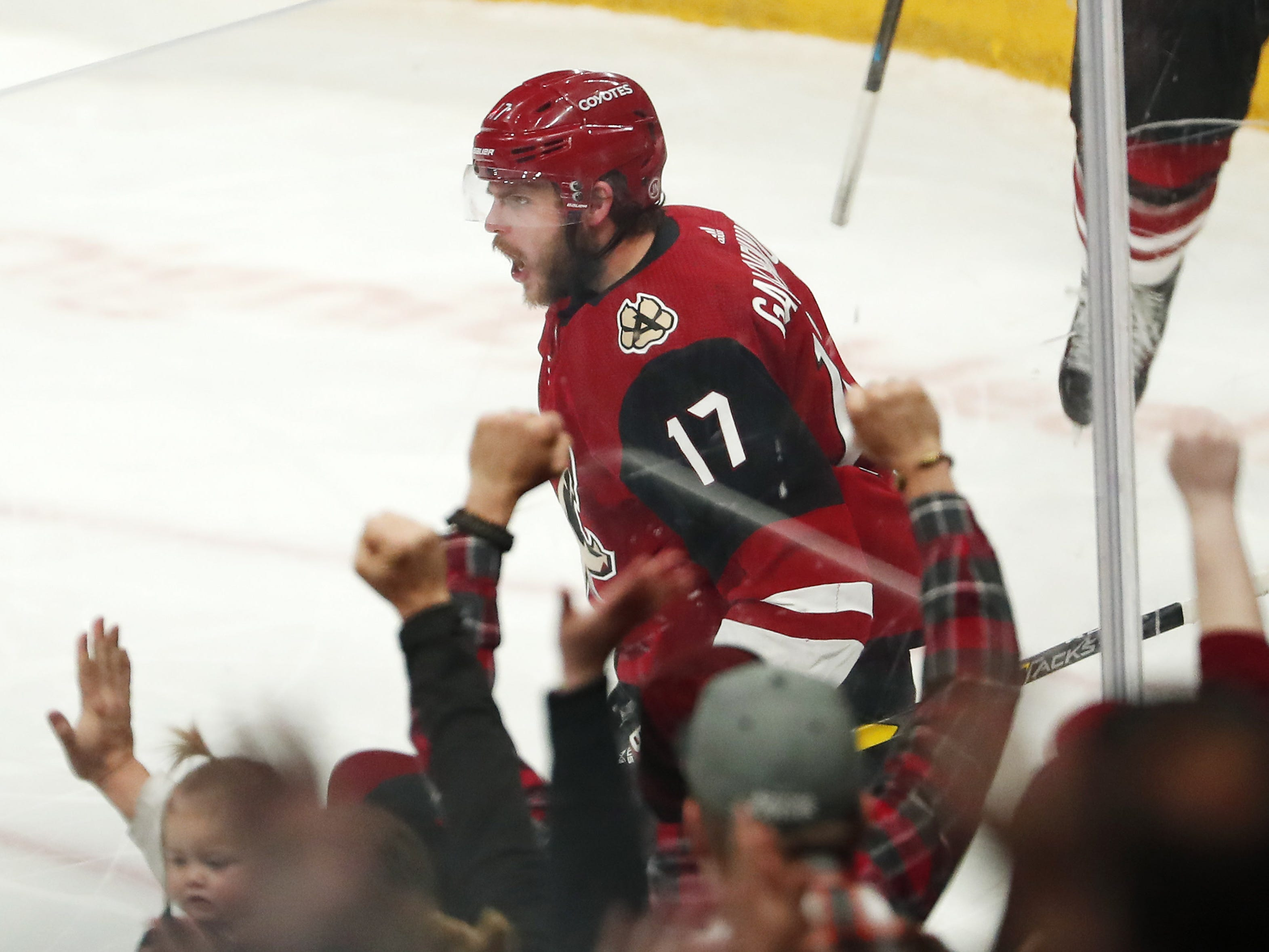 Arizona Coyotes center Alex Galchenyuk (17) celebrates after scoring against the Minnesota Wild during the first period in Glendale March 31, 2019.