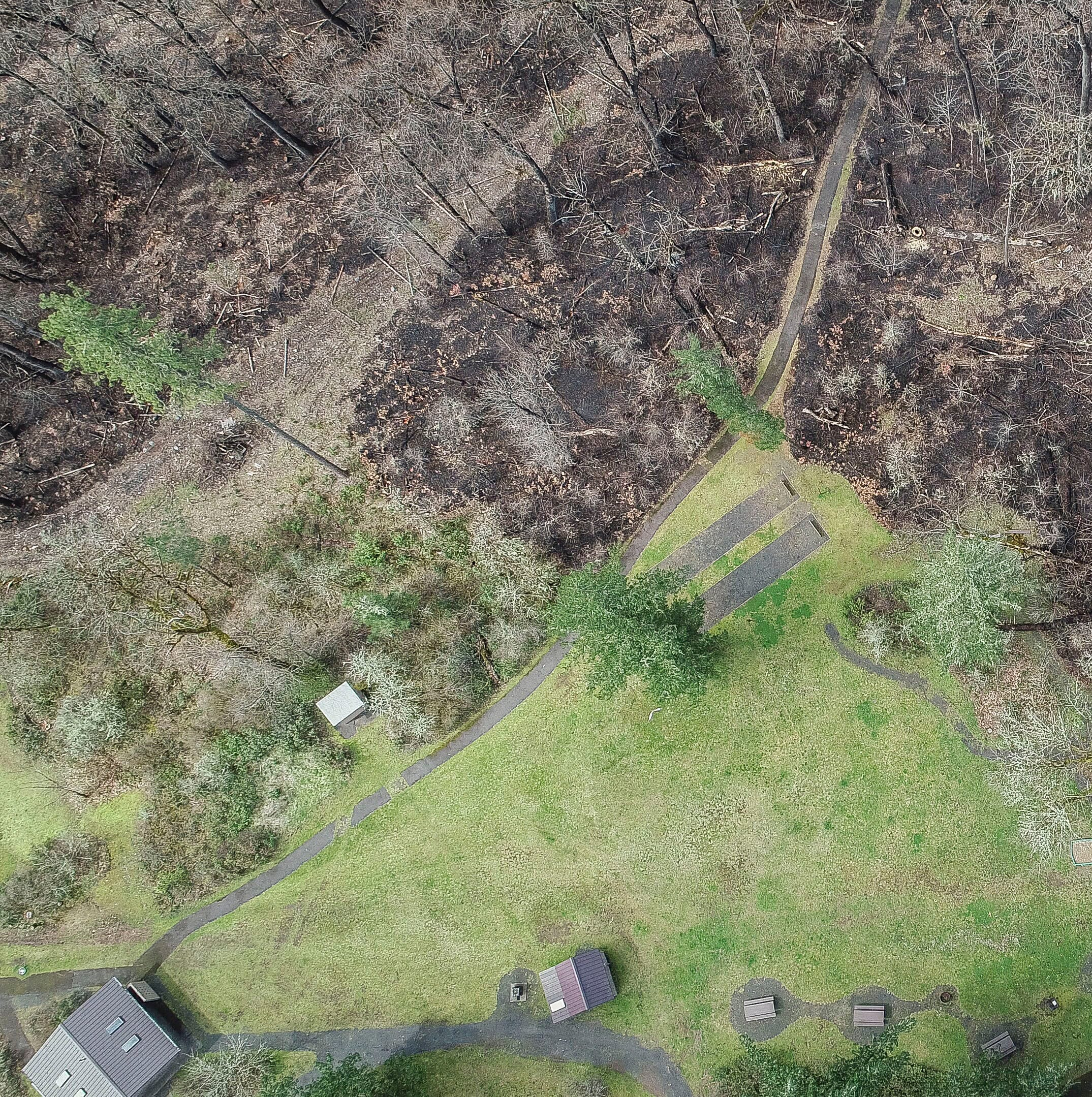 March wildfire that evacuated homes in Lyons and burned state park cost $332,000