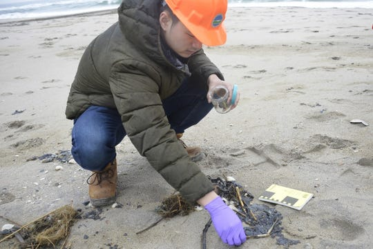 New York Department of Environmental Conservation environmental engineer Rick Lin collects tar ball samples Sunday, March 31, 2019, at Breezy Point Beach.
