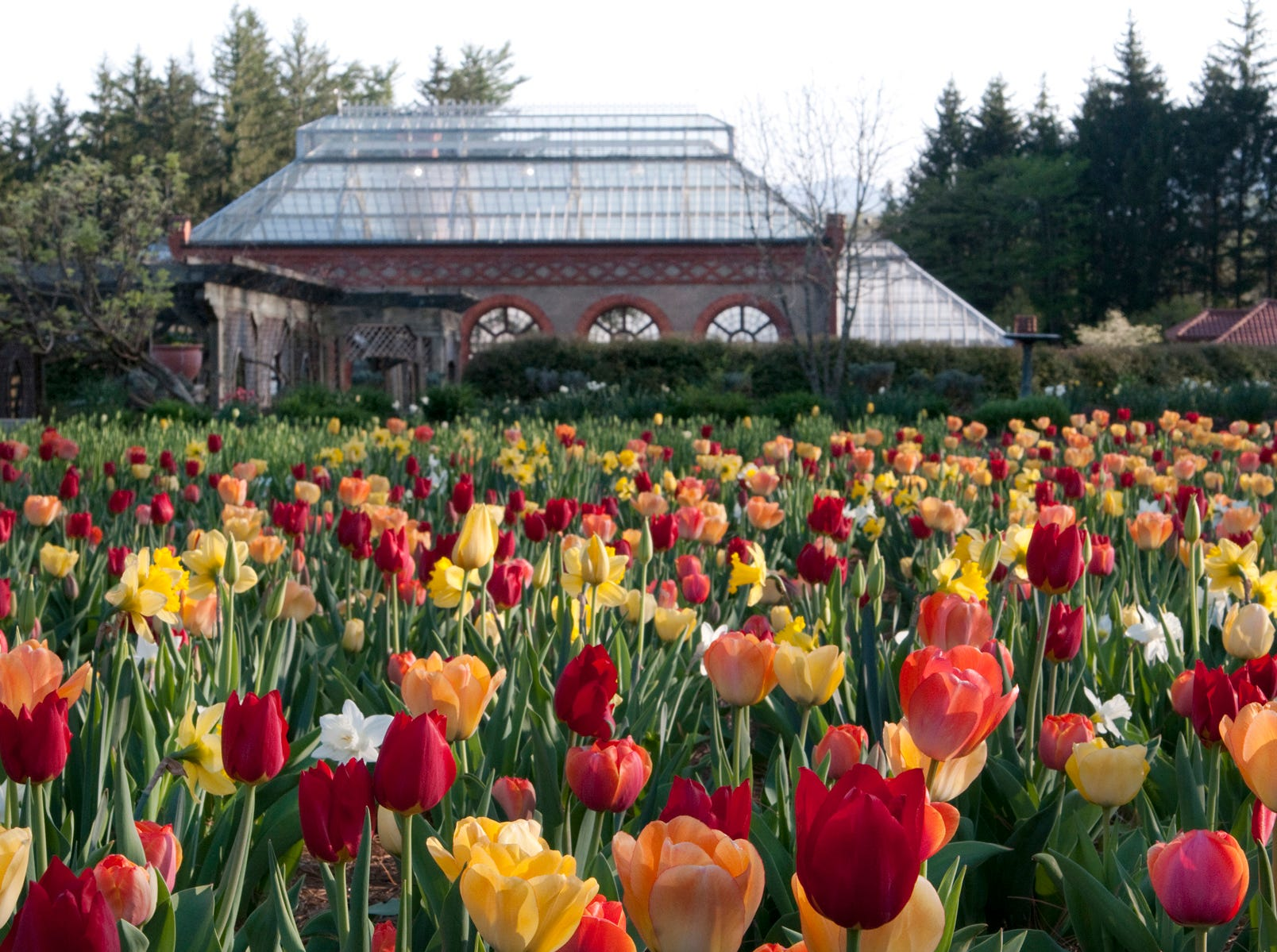 Biltmore's annual spring celebration, Biltmore Blooms, runs through May 23, 2019.