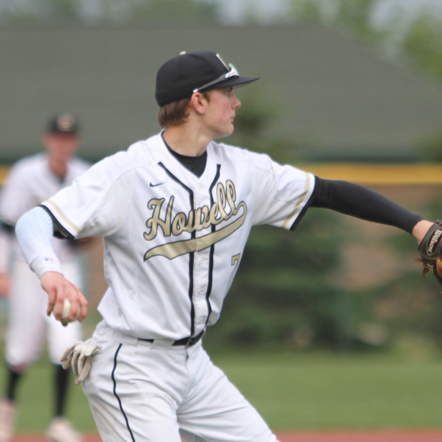 Who will be the powers in Livingston County baseball in 2019?