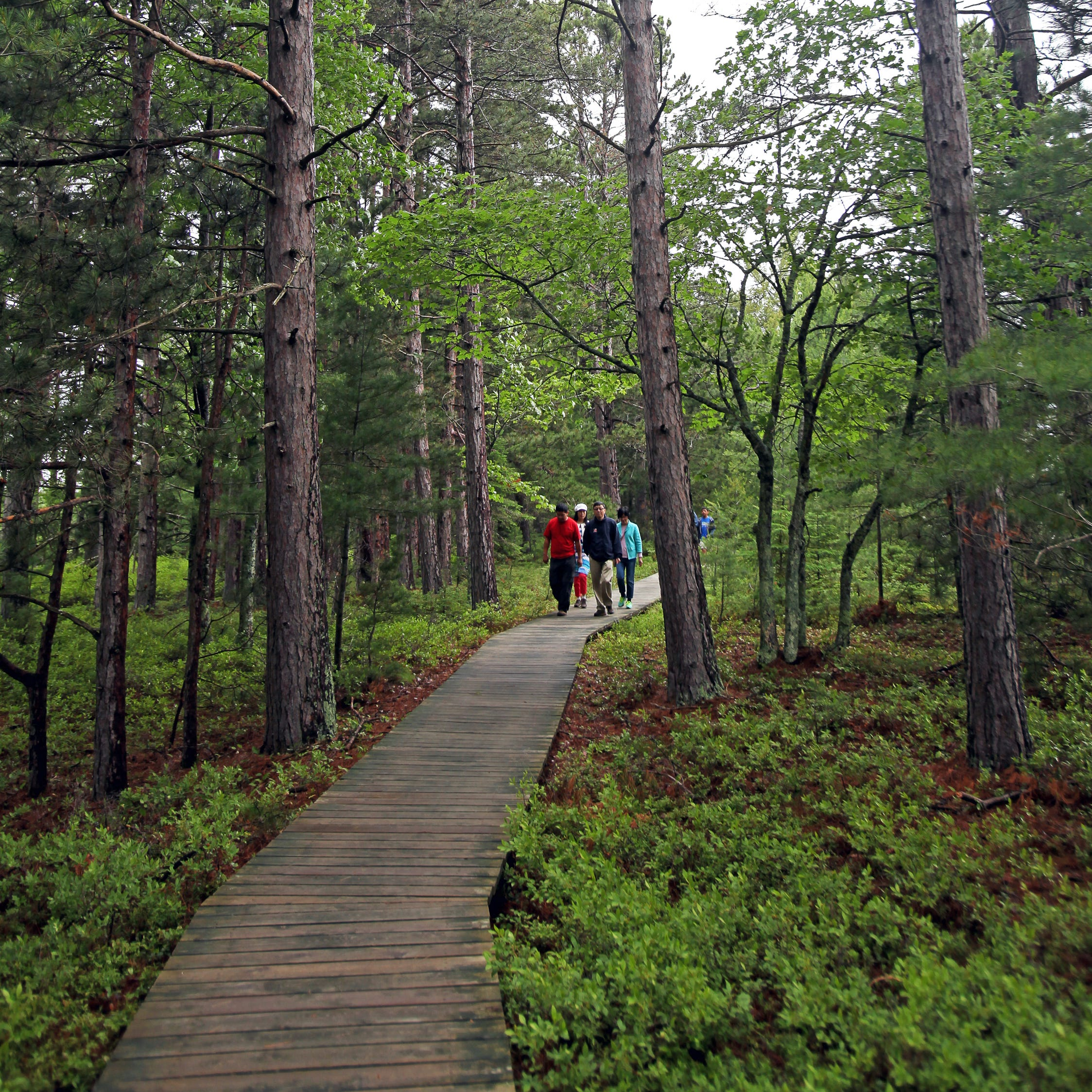 8 boardwalks and paved trails for spring hikes in Wisconsin