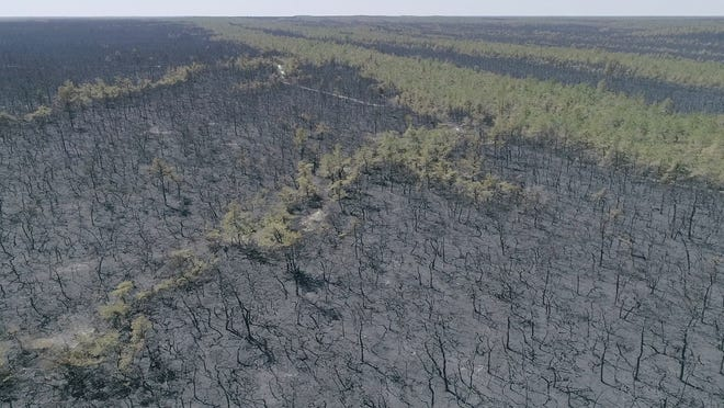 Aerial images of the forest fire which destroyed more than 10,000 acres in Chatsworth on Monday April 1, 2019.