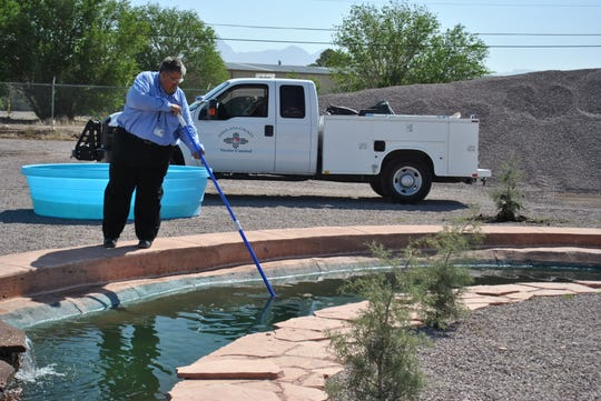 Doña Ana County Vector Control Supervisor Ken Sholar tends to the fish at the county's minnow ponds at 4605 Picacho Ave. Starting April 2, minnows can be picked up free of charge between 8 and 10 a.m.