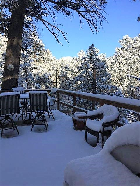 The morning view from Christine DeBolt's cabin deck in Ruidoso, April 1. The Village saw between 2-4 inches and more may be on the way soon.