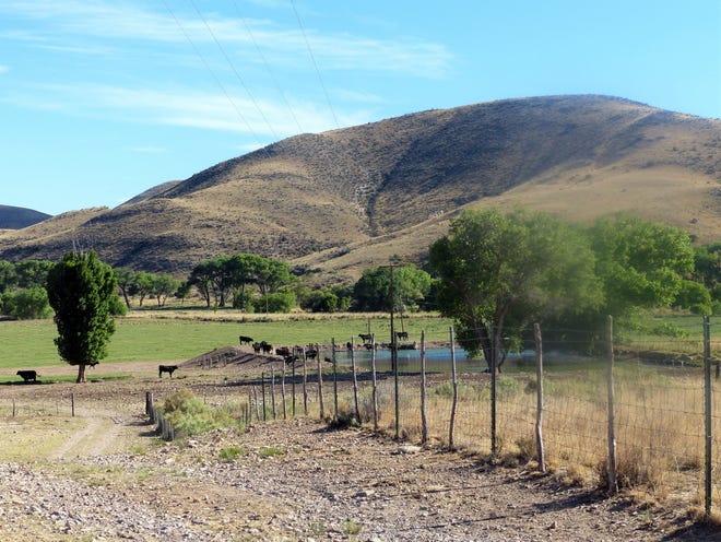 Hondo Valley still supports cattle and produce, as well as orchards.