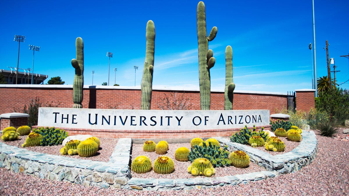 University of Arizona reports new daily high for positive COVID-19 tests