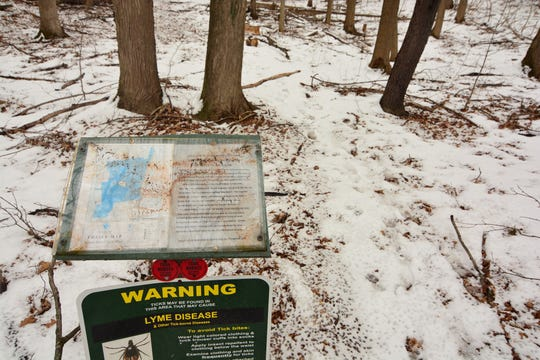 The trailhead for the hike at James Baird State Park is marked by a waist-level sign in the center of a small clearing across from the parking lot for the restaurant.