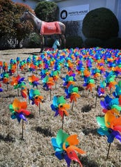 Pinwheels for Patsy's House is a fundraiser where each donation of $20 will remove one of the 1,524 pinwheels that represent each case of investigated child abuse in Wichita County in 2018.