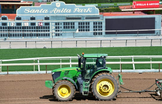 Santa Anita Another Horse Dies At Famed California Track