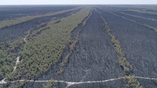 Aerial images of the forest fire which destroyed more than 10,000 acres in Chatsworth, N.J. on Monday April 1, 2019. Aerial Photos made in cooperation with the NJ Forest Fire Service.
