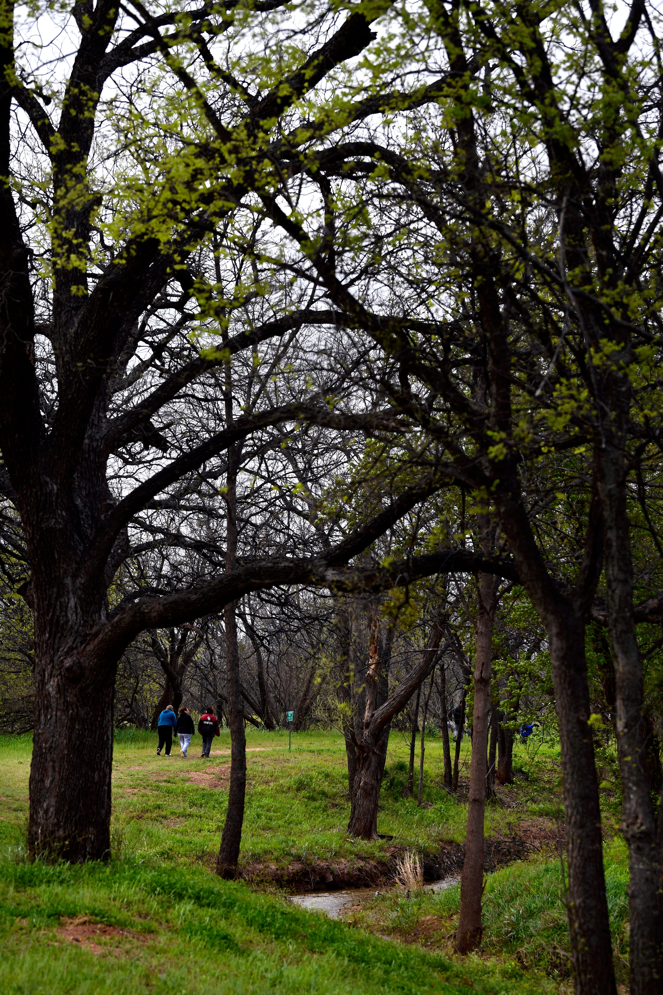 Hikers return to the starting point of the annual Mayor's Hike along Cedar Creek Saturday. While the grass along the Cedar Creek Waterway was green, leaves were just beginning to be seen among the branches along the route.