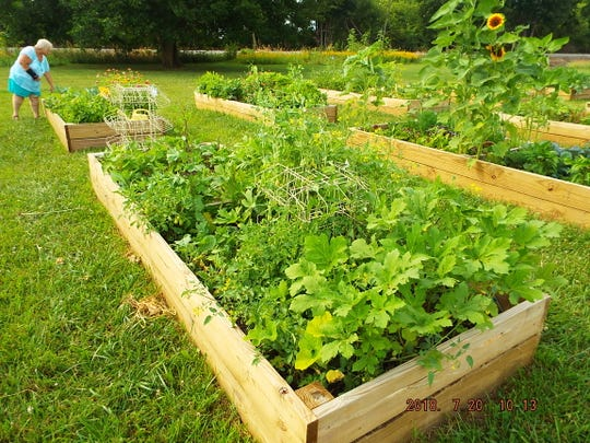 The Community Gardens on Countryside Drive in Fremont includes a dozen raised beds.