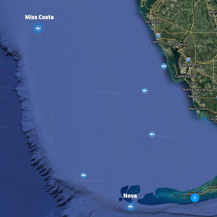 Miss Costa — another great white shark — pings in the Gulf of Mexico