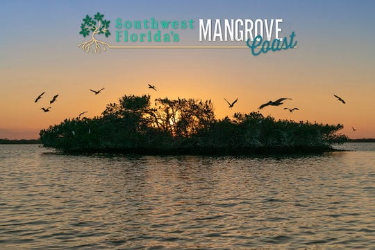 """Friends of Rookery Bay will host a sneak peak of a new PBS documentary, """"Southwest Florida's Mangrove Coast,"""" at 7 p.m. on Monday, April 8 at Silverspot Cinema, 9118 Strada Place in Mercato."""