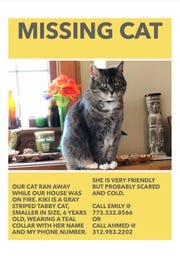 Emily Hendricks and Ahmed Abu Seif are looking for their missing gray striped tabby cat named Kiki. The cat went missing after the April 1 house fire in Wauwatosa.