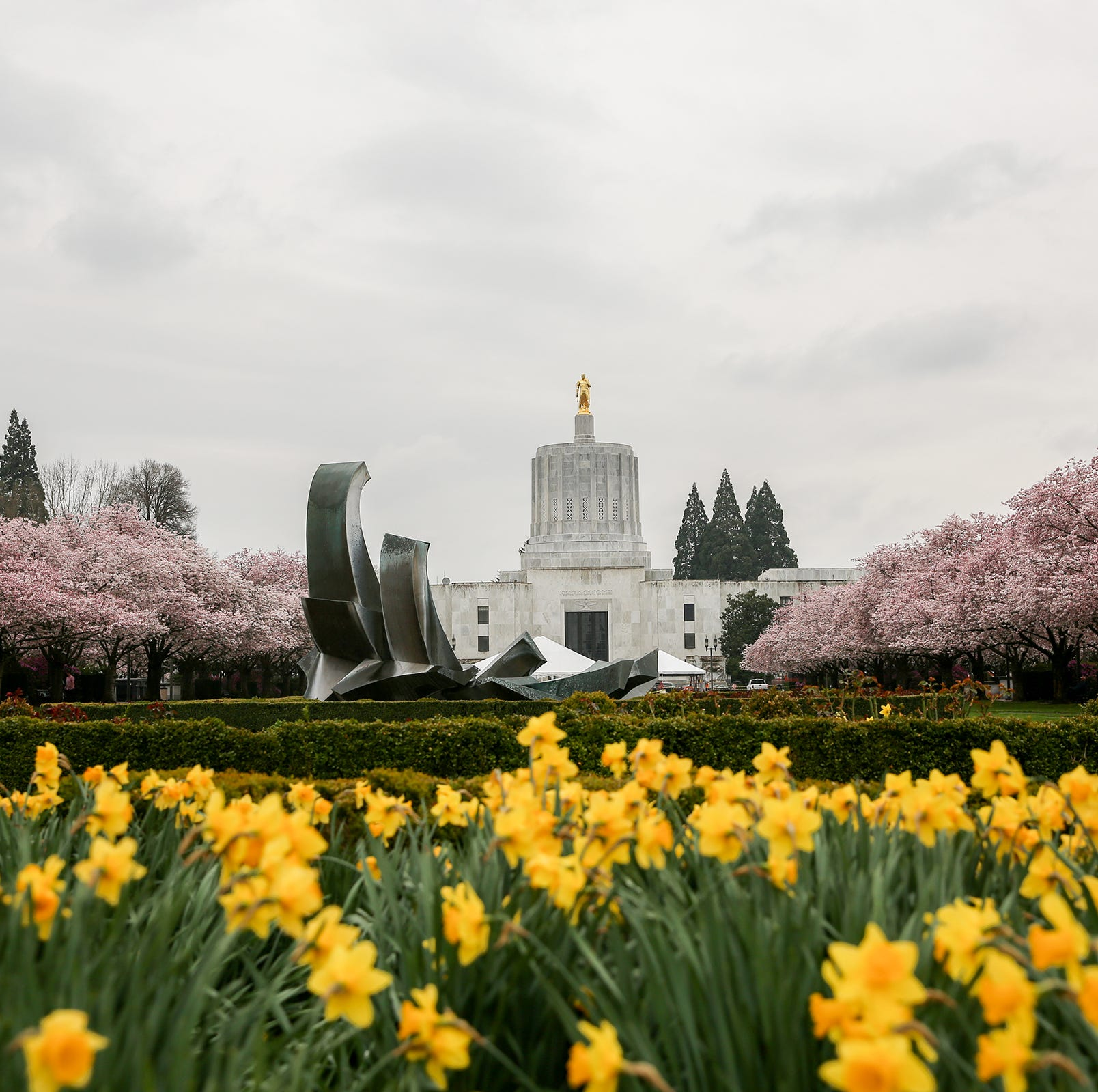 Oregon Legislature considers several dozen bills to limit public records access
