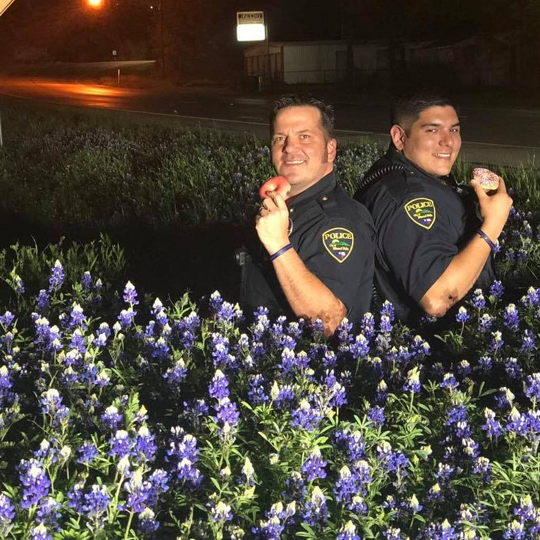#BacktheBLUEbonnets challenge: Texas police posing in beds of bluebonnets