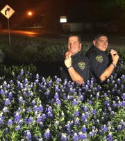 Sgt. Caleb Randall, left, and patrolman Juan Saucedo of the Mineral Wells Police Department pose in a bed of bluebonnets for the #BacktheBLUEbonnets challenge. The picture was posted on Facebook on Wednesday, April 3, 2019.