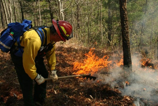 Great Smoky Mountains National Park will conduct a prescribed burn on the Little Cataloochee Trail April 4.