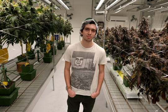 Chase Marx, 22 of Royal Oak overseas the growth of different strains of marijuana at Choice, a marijuana grow and processing center in Leoni Township, Michigan on Thursday, March 28, 2019.