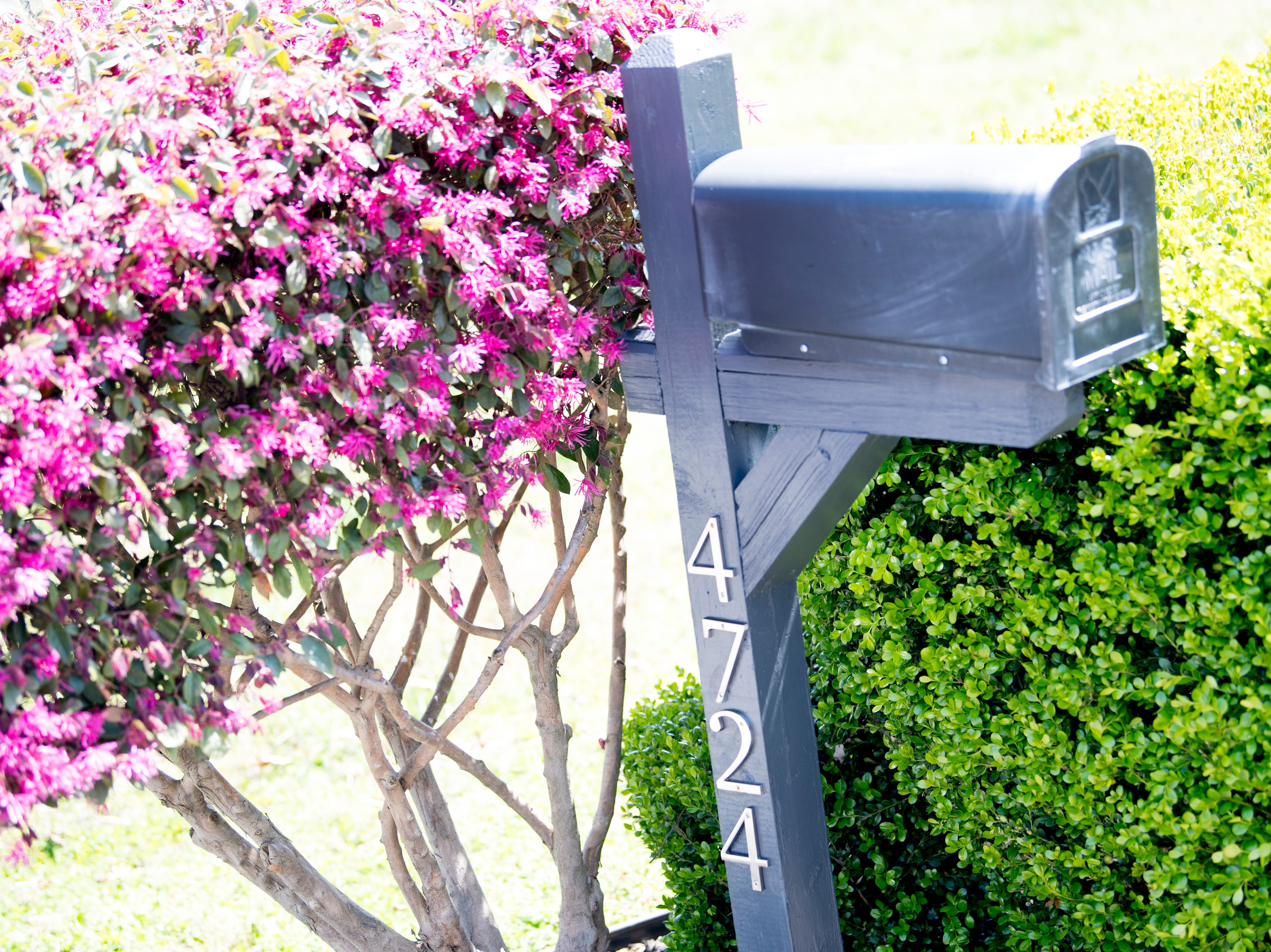 The mailbox of Miller and Gurney's home off McKamey Road west of Knoxville, Tennessee on Wednesday, April 3, 2019. After months of house searching, the couple decided to move into their current home last December after making some small compromises like being further away from downtown.