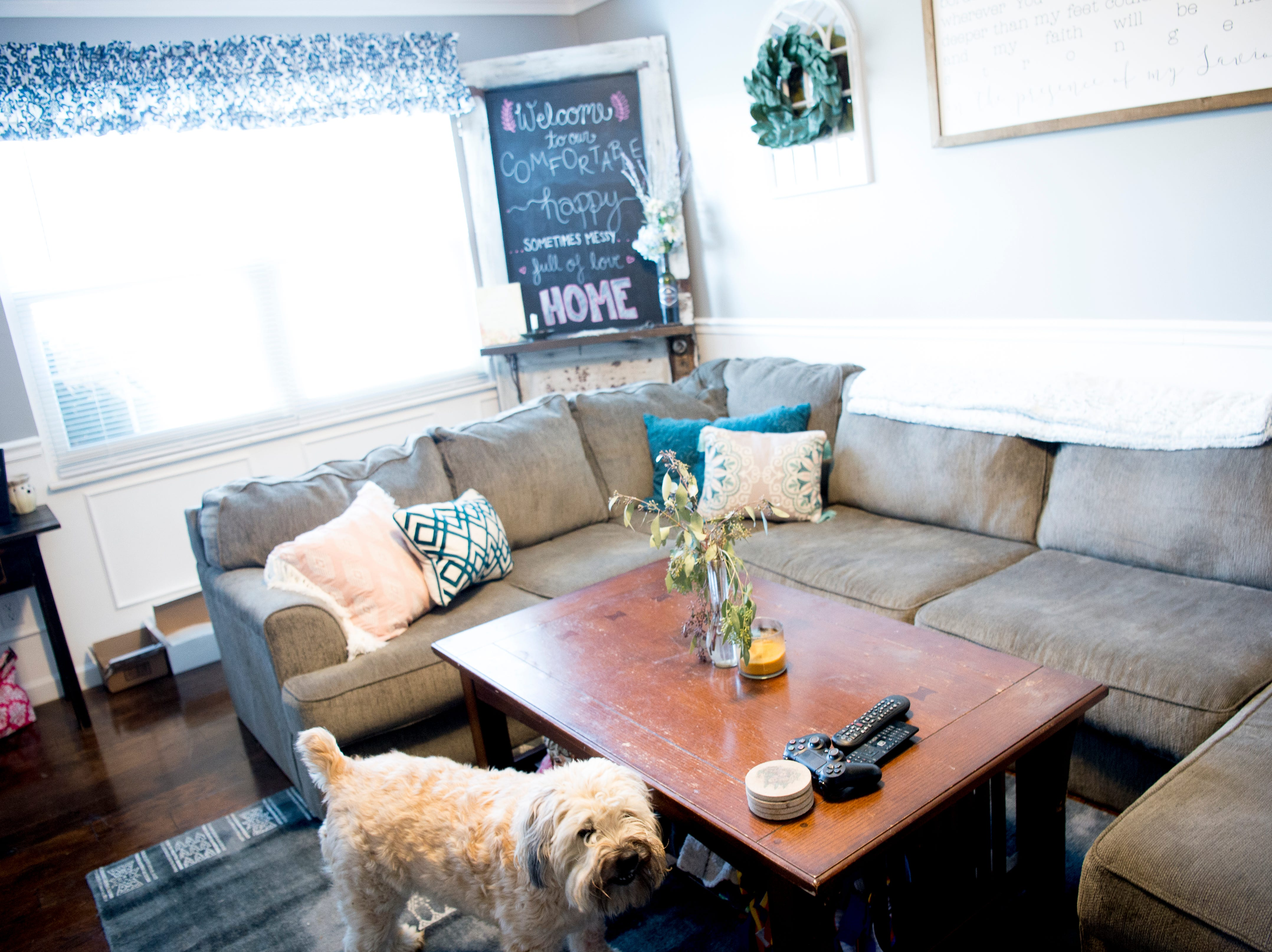 The living room of Miller and Gurney's home off McKamey Road west of Knoxville, Tennessee on Wednesday, April 3, 2019. After months of house searching, the couple decided to move into their current home last December after making some small compromises like being further away from downtown.