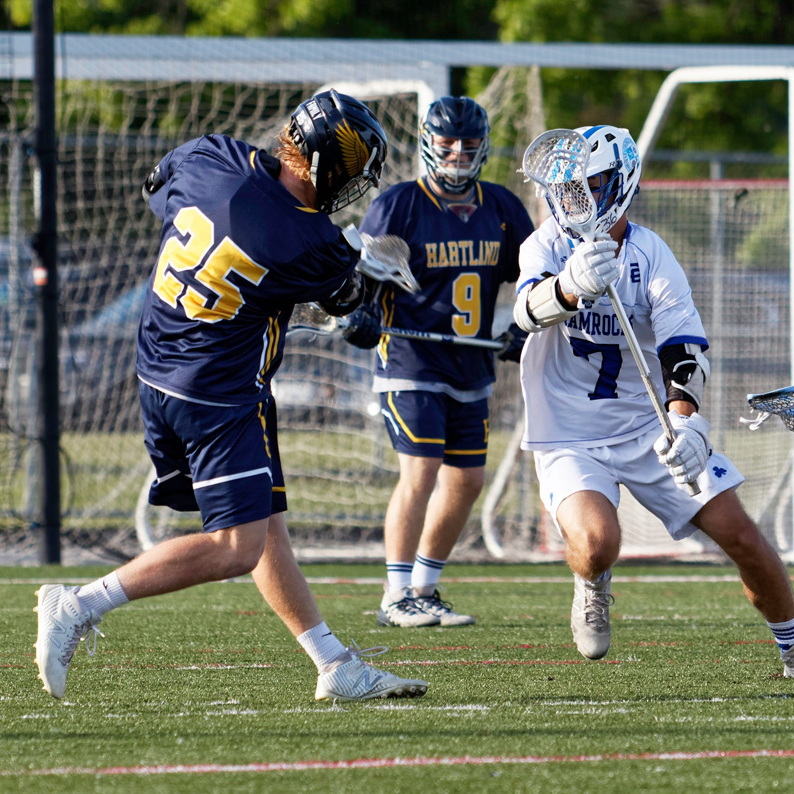 A look at Livingston County's 2019 boys lacrosse teams