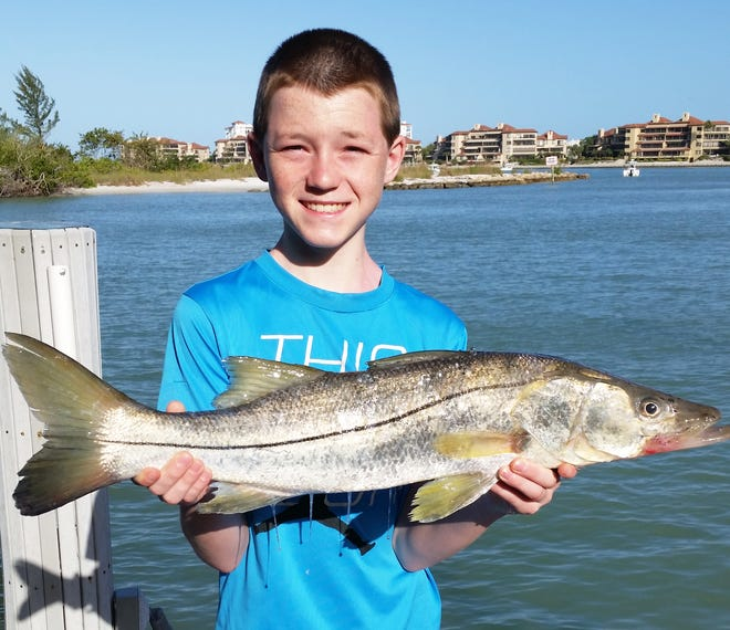 """Sean Gregorius, a 12-year old visitor from Wisconsin, caught this 29"""" snook off the docks of Collier Creek."""