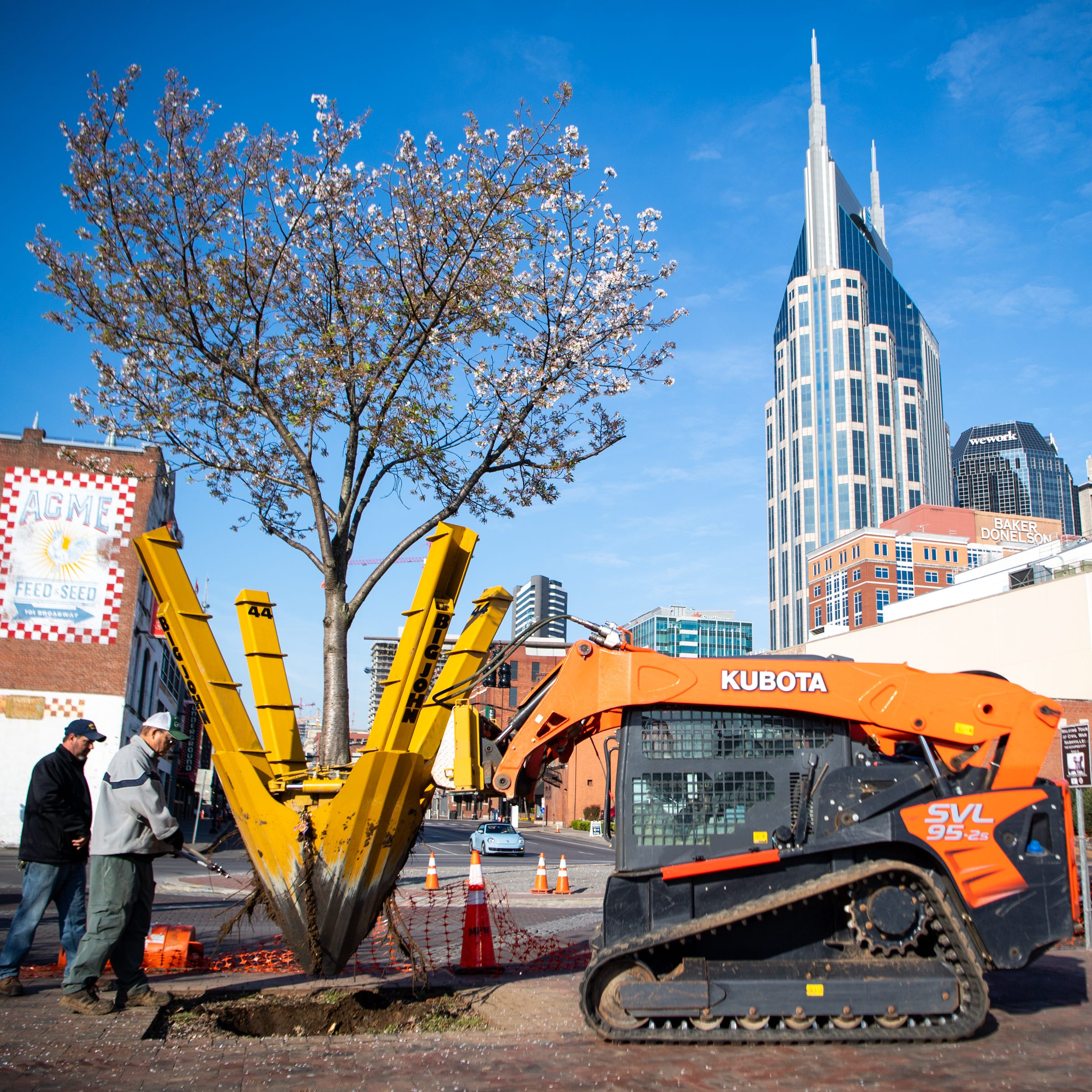 Nashville digs up, replants cherry trees downtown ahead of NFL Draft