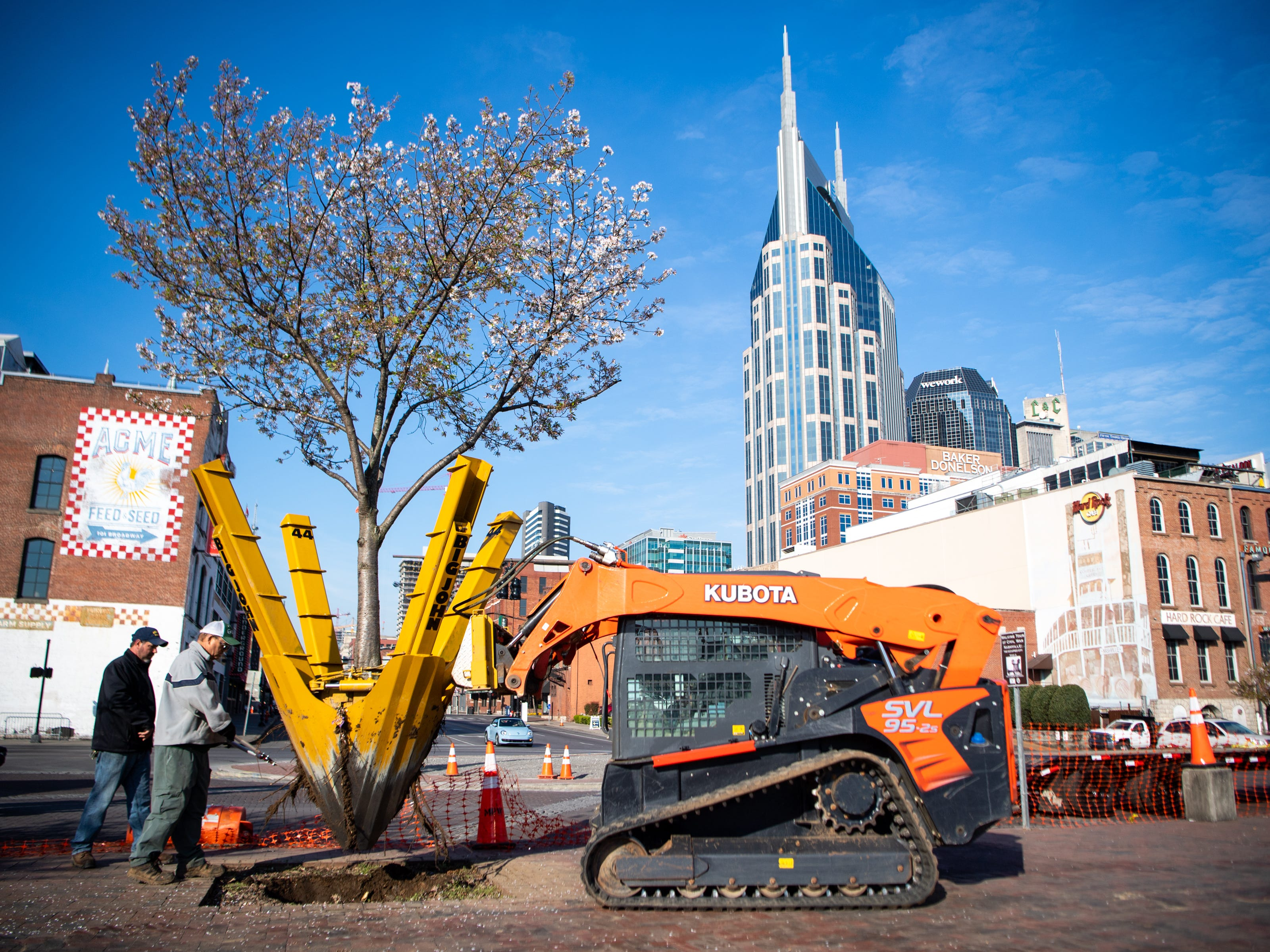 Metro Parks and Recreation workers relocate a Yoshino Cherry tree along the riverfront Wednesday, April 3, 2019, in Nashville, Tenn. The City is transplanting the trees after protest of chopping the trees down to make room for a giant stage for the upcoming NFL Draft.