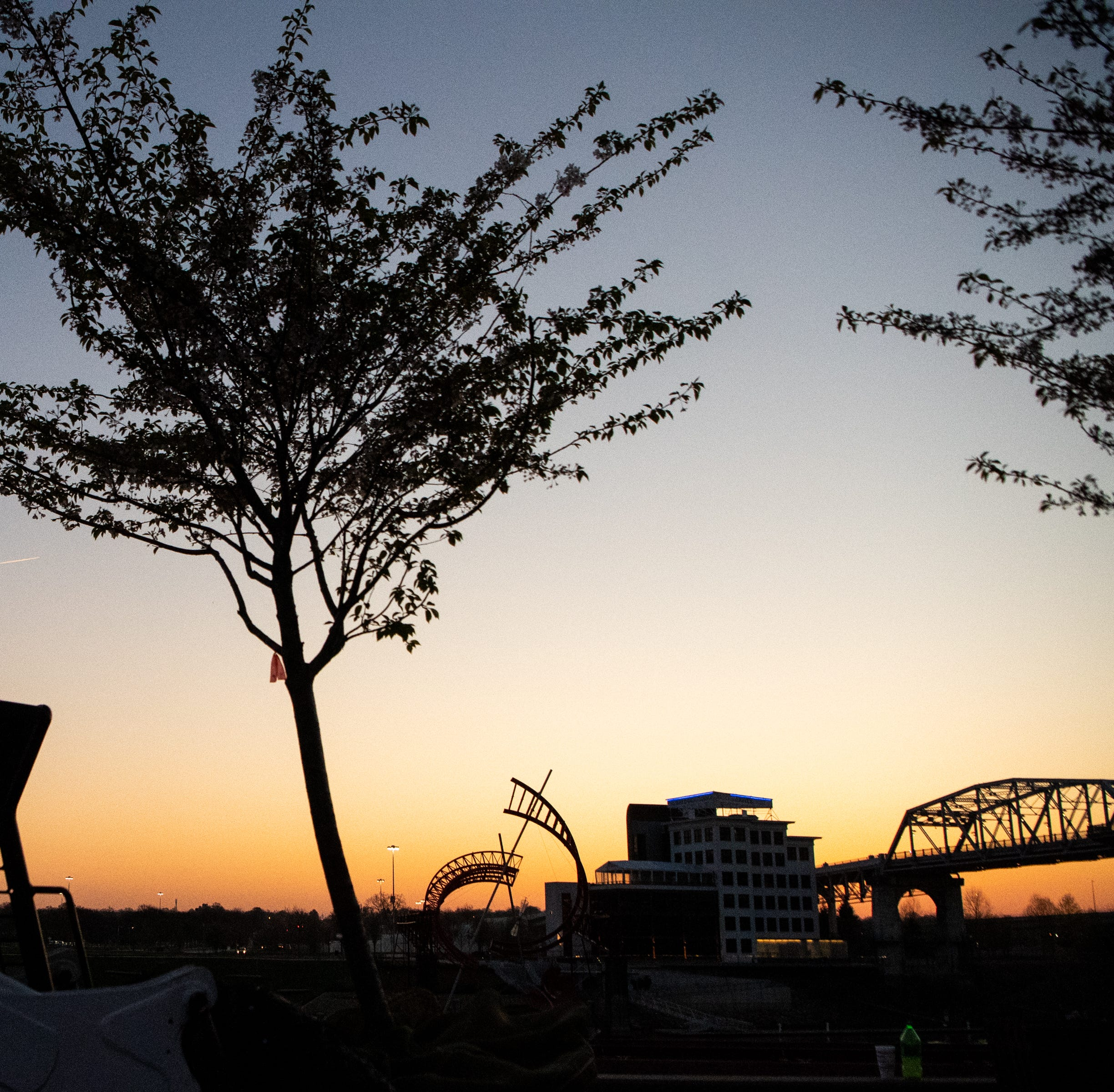 Decisions on Nashville cherry trees were naive, disconnected | Opinion