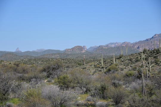 Superstition Wilderness vistas seen from the Legends of Superior Trails system.