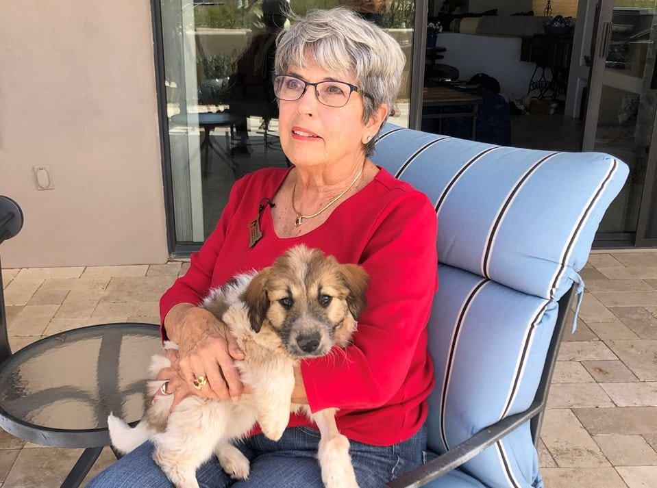 Latte's foster mother, Bonnie Ziegler, is encouraging pet owners to be vigilant and protect their pets when they are outside.