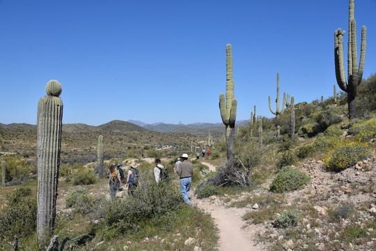 Hikers on the Arnett Canyon loop  approach the Picketpost trailhead.