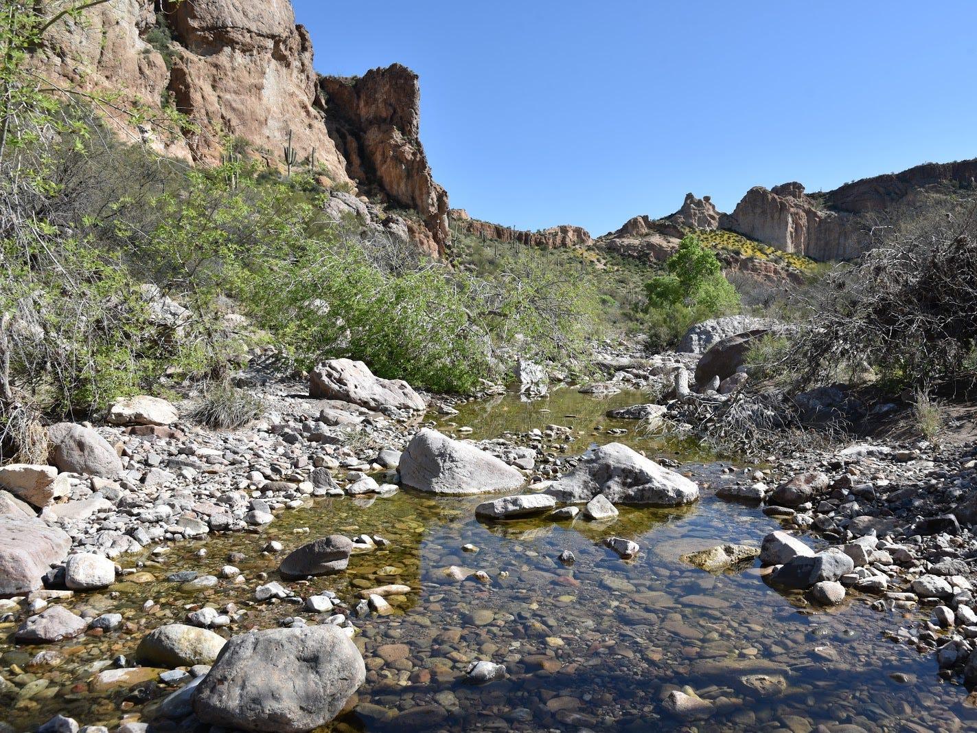 Arnett Creek flows through volcanic terrain.