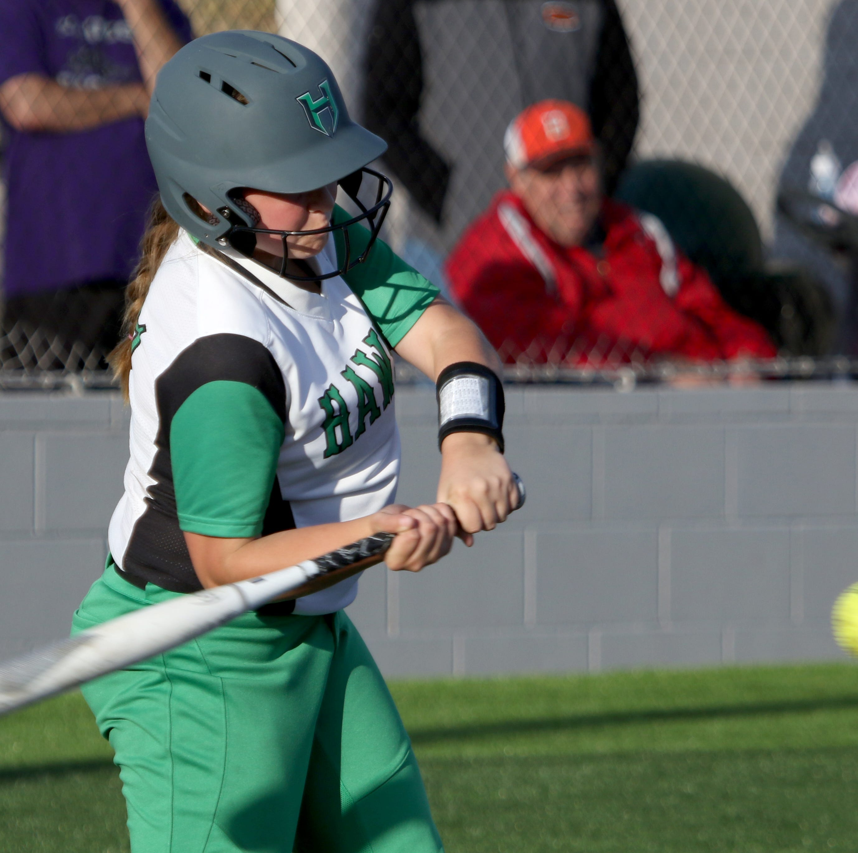 High school softball leaders (through April 13)