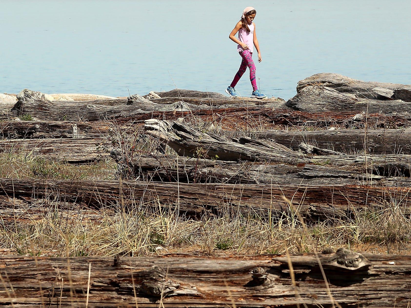 Kekeya Maher-Sherman, 9, walks atop the driftwood logs strewn along the shore of Bainbridge Island's Fay Bainbridge Park on Thursday, April 4, 2019.