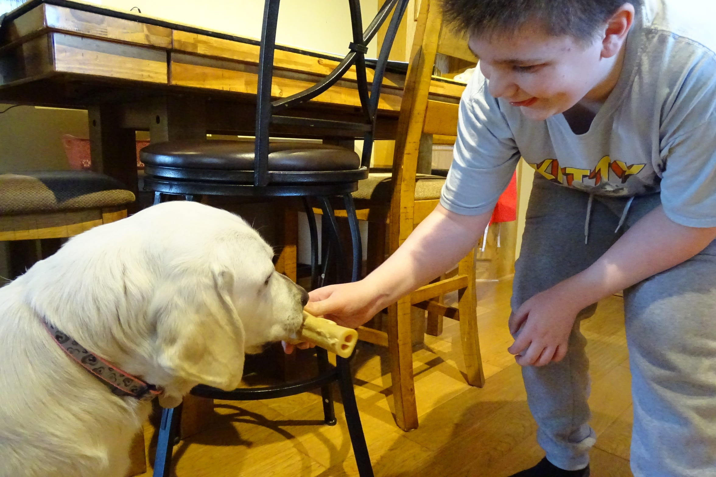 The bonding process for Brenden and Jewell involves a lot of treats. Jewell was happy to cooperate.