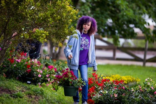 Rory Diaz, 12, carries a plant to be priced on Thursday, April 4, 2019 in preparation for the annual Big Bloom which is Saturday at the South Texas Botanical Gardens & Nature Center. Thousands of varieties of plants have been ordered from wholesalers for the event. Nueces Master Gardeners will be on hand to help visitors pick their plants and answer care questions.