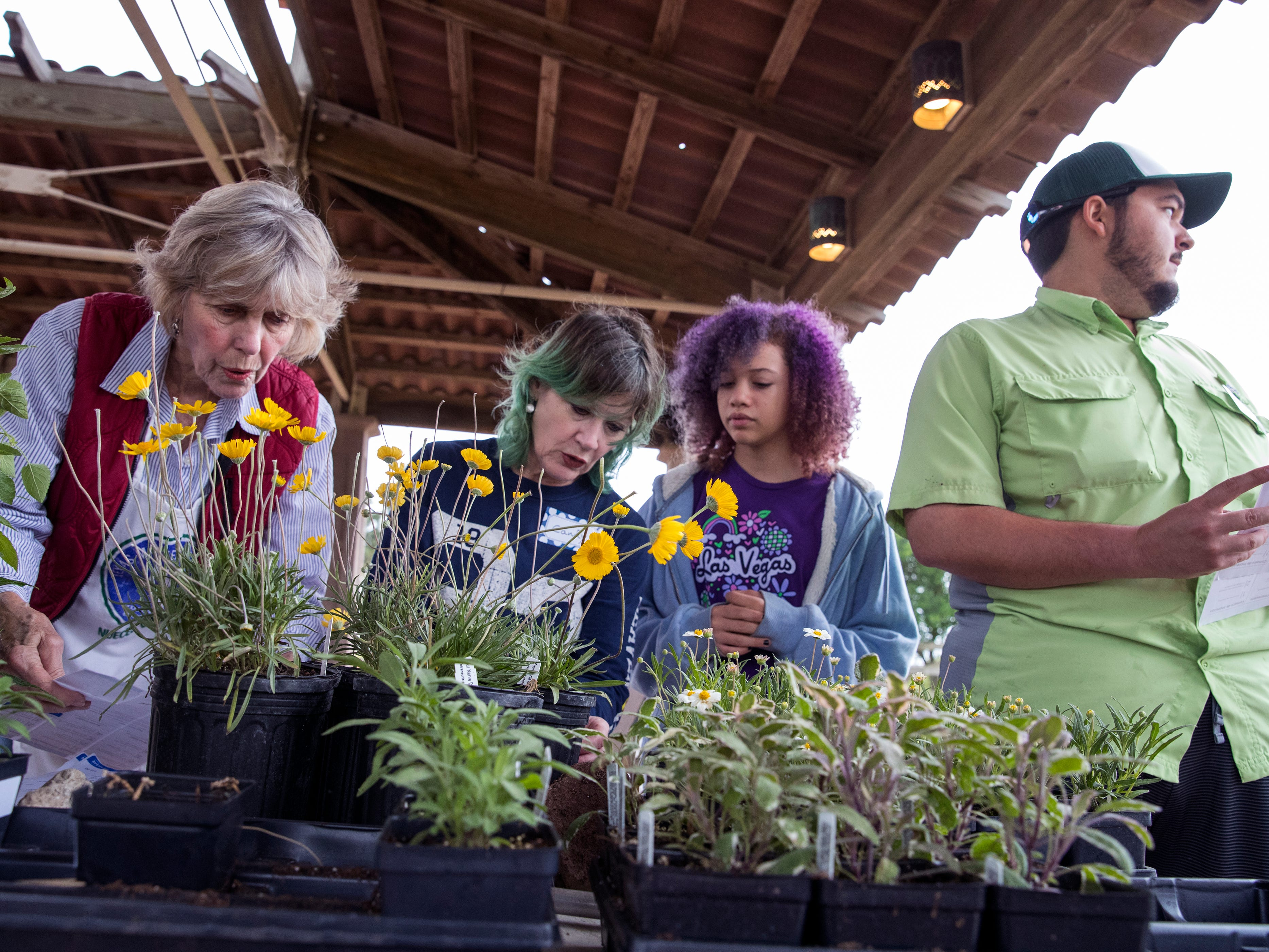 Volunteers Karen Easton (from left), Candy Tidmore, Rory Diaz, 12, and Brandon Rodriguez, a Texas A&M University-Corpus Christi student, price plants on Thursday, April 4, 2019 in preparation for the annual Big Bloom which is Saturday at the South Texas Botanical Gardens & Nature Center. Thousands of varieties of plants have been ordered from wholesalers for the event. Nueces Master Gardeners will be on hand to help visitors pick their plants and answer care questions.