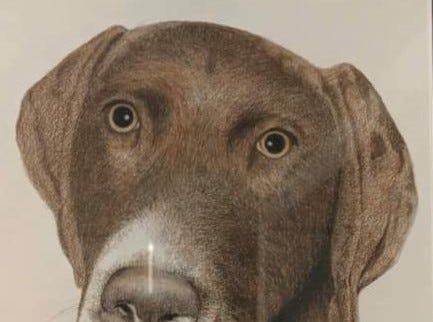 Thom Van Benschoten made this print of Krista Schroeder's dog, Max.