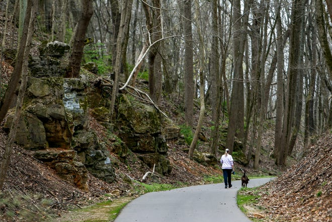 A woman walks down the trail with her dog leading the way at the Clarksville Greenway on Thursday.