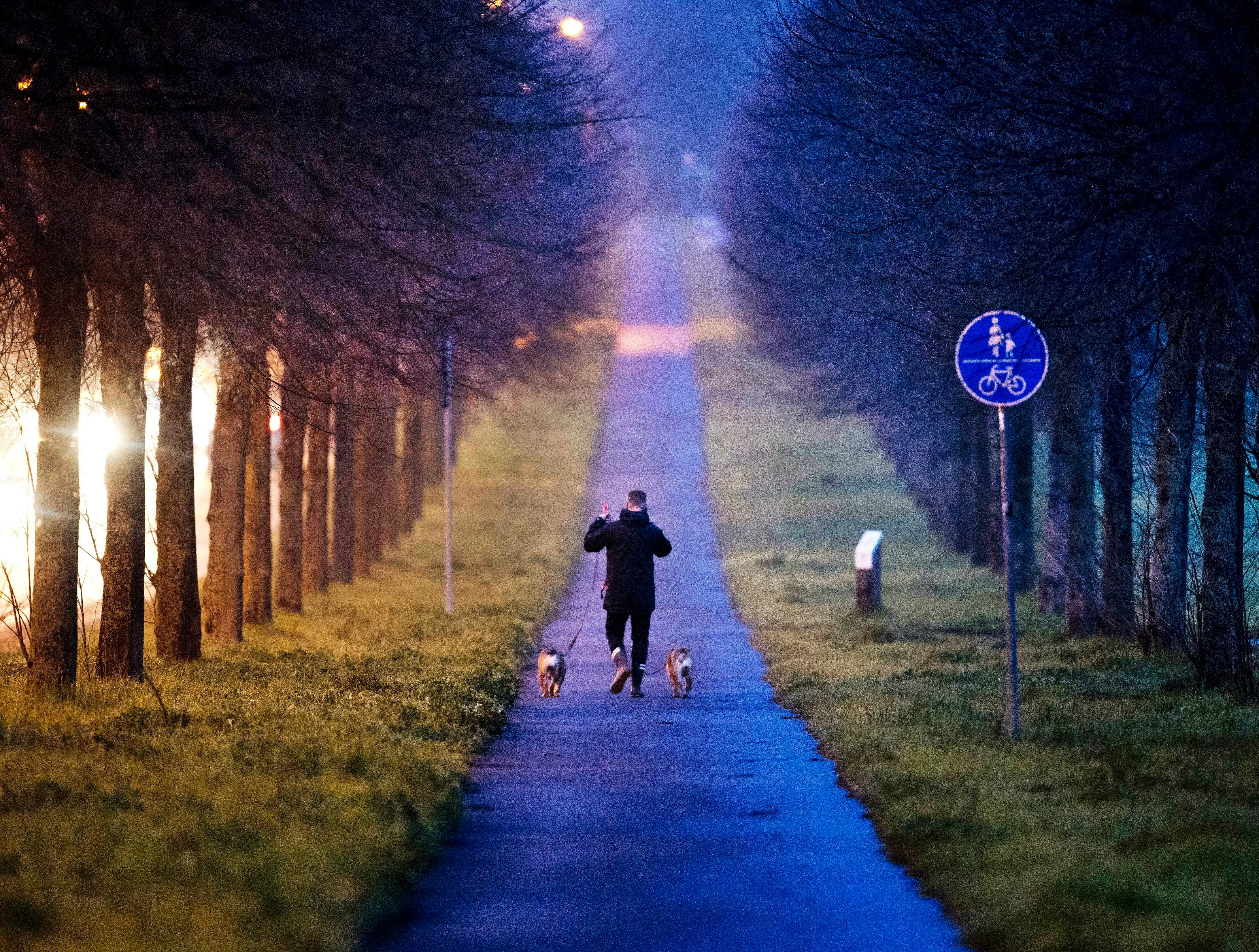 A man walks his dogs in an alley in the outskirts of Frankfurt, Germany, early Thursday, April 4, 2019.