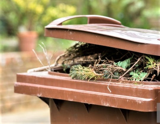 A close up of an overflowing garden waste recycling bin.