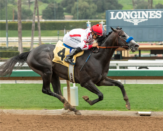 Roadster and jockey Mike Smith win an allowance race at Santa Anita Park on March 1.