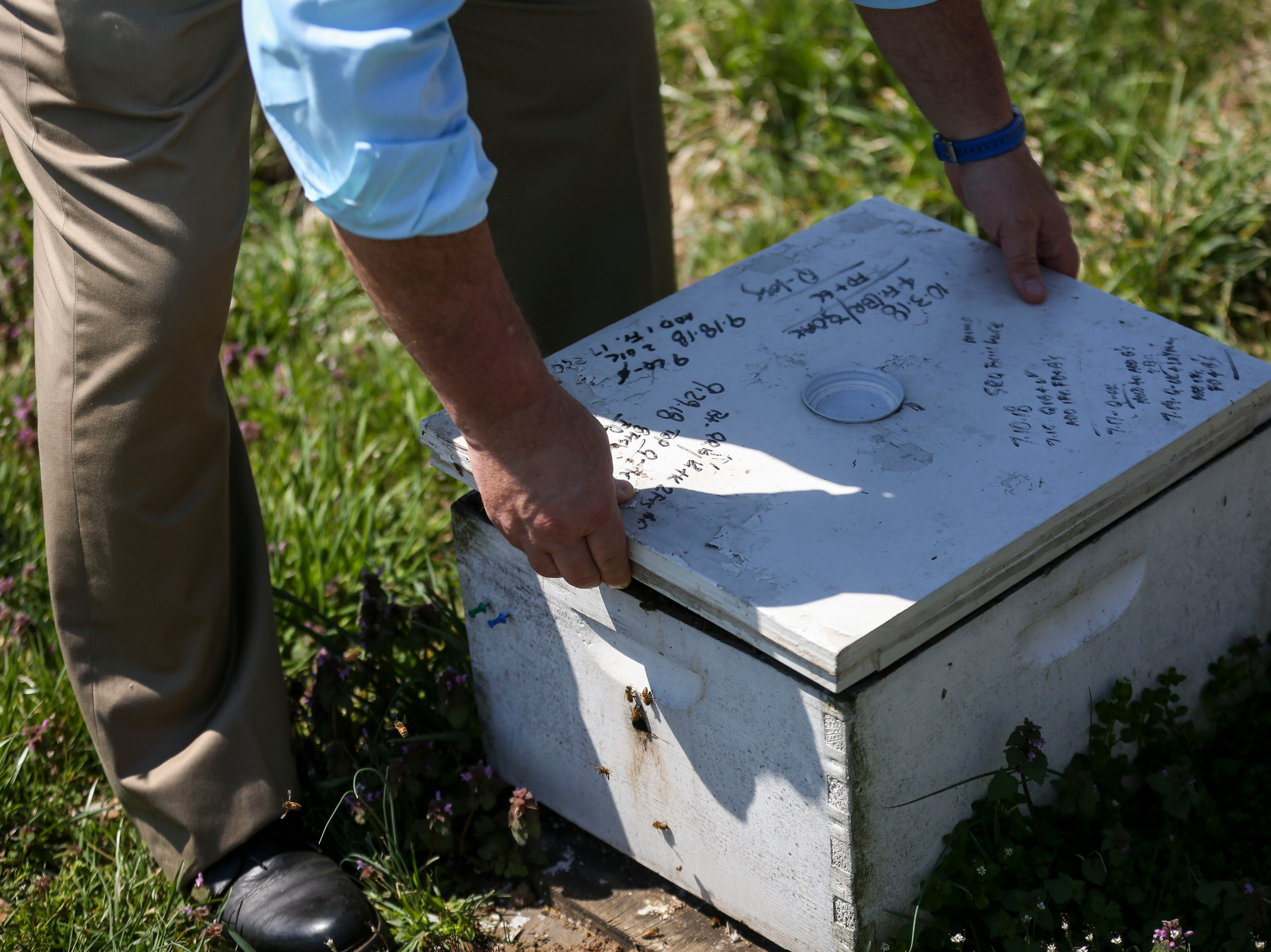 Richard Hosey lifts the lid of a beehive the in the Hosey Honey bee yard in Midway, Ky. on Wednesday, April 3, 2019. Hosey Honey is a small family run honey company, their Hosey's Queen's Triple Crown honey is used in the sweetener in the $1,000 Woodford Reserve Kentucky Derby mint julep.