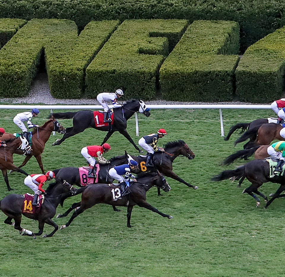 Horses flash past the Keeneland hedge in the fifth race on the opening day of the spring meet.