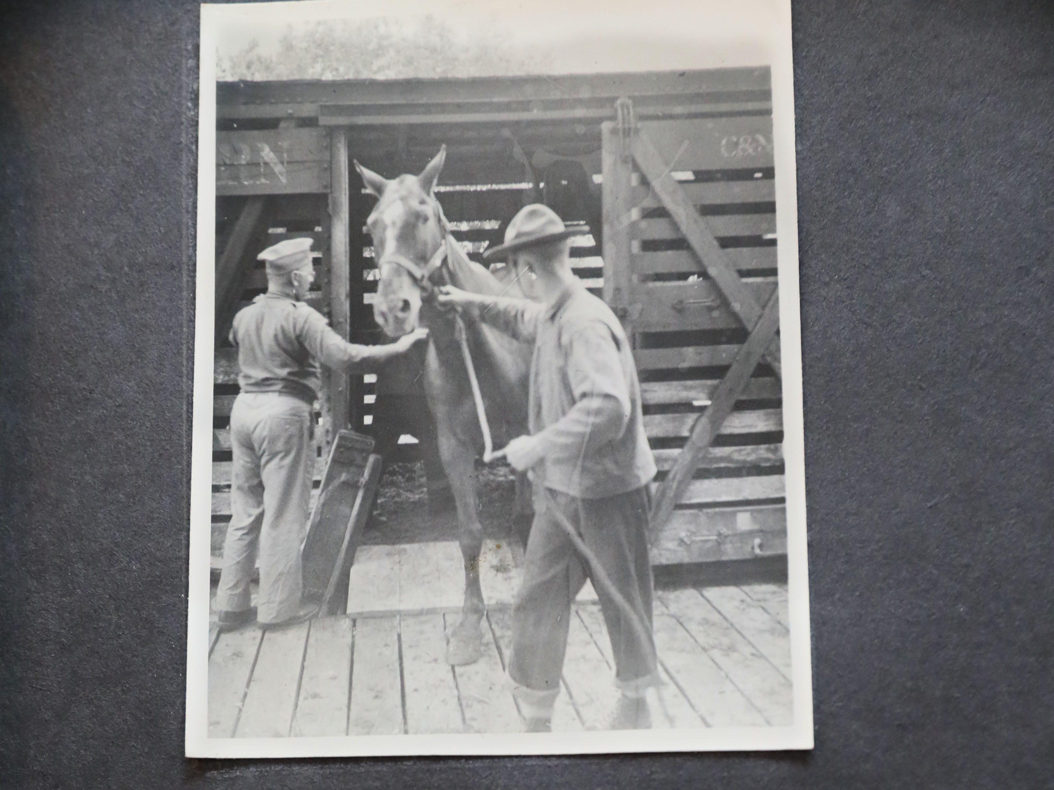Photos  Jake Skocir took of the 105th Cavalry unloading horses.