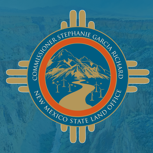 The logo selected by Land Commissioner Stephanie Garcia-Richard was criticized for failing to reflect the oil and gas contribution.